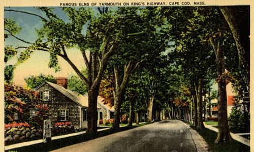 Yarmouth Elms Along 6A, 1930s